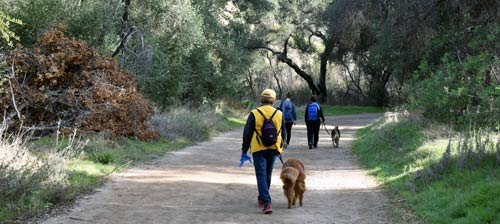 Walk your dogs in Blue Sky Reserve...on a leash!